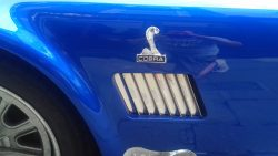 1969 AC Cobra (detail)